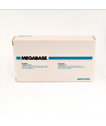 Megabase